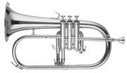 RS Berkeley FLU668 Flugel Horn